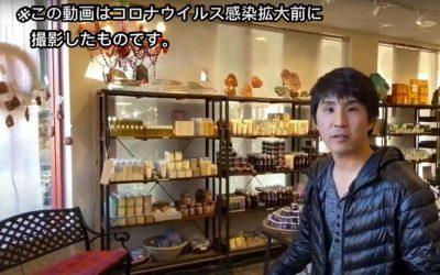 【女性旅行者必見】パワースポットセドナで日本人女性に大人気のお店を紹介します。